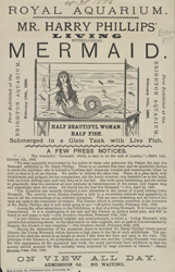 Advert for the Royal Aquarium 817
